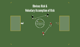 Obvious Risk &