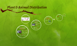 Plant & Animal Distribution