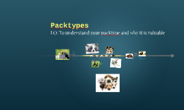 Packtypes