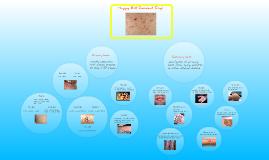 Copy of derm