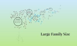 Large Family Size