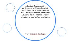 Libertad de expresión en la arena político-electoral: decisi
