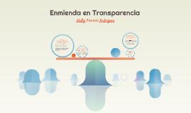 Enmienda en Transparencia