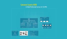 Copy of Cameron County WDA  & C2 GPS