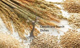 Cereals and Starch Dishes