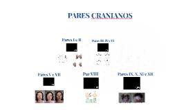 Cópia de  Exame Neurológico - CSC