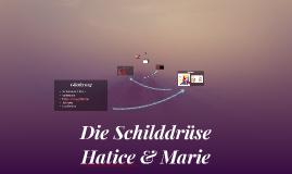 Copy of Die Schilddrüse
