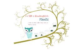 Copy of To Kill a Mockingbird: Plants