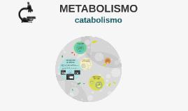 2º BCT METABOLISMO (2ª parte)