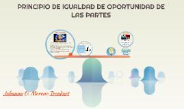 PRINCIPIO DE IGUALDAD DE OPORTUNIDAD DE LAS PARTES