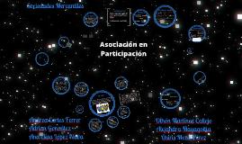 Copy of Asociación en Participación