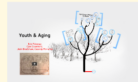 Youth & Aging Presentation