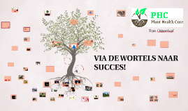 Copy of VIA DE WORTELS NAAR SUCCES