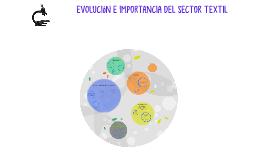 Copy of Evolución e importancia del sector textil