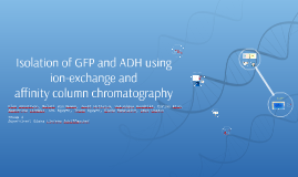 Isolation of GFP and ADH using ion-exchange and affinity col