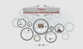 Evolution - Chap.2