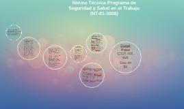 Norma Técnica Programa de Seguridad y Salud en el Trabajo (N