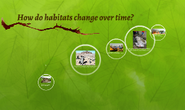 Copy of Habitats Change Over Time