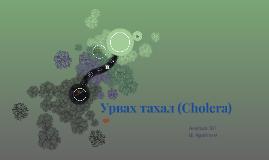 Copy of Урвах тахал (Cholera)