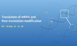 Translation of mRNA and Post-translational modification