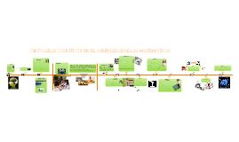 Copy of OBSTÁCULOS  COGNITIVOS  EN EL  APRENDIZAJE  DE LAS  MATEMÁTICAS