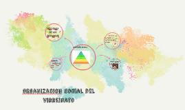 ORganizacio social del virreinato