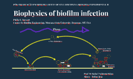 Biophysics of biofilm infection