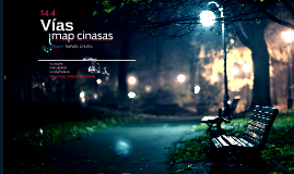 Vías map cinasas