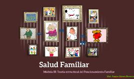 Módulo III: Enfermeria en Salud Familiar:Teoría Estructural del Funcionamiento Familiar
