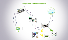 Sandy Hook Promise: A Visual Representation