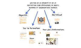 09/2017 GESTION DE LA SÉCURITÉ ET DE LA PROTECTION POUR DDH