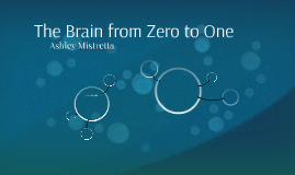 The Brain from Zero to One