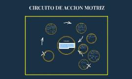 Copy of CIRCUITO DE ACCION MOTRIZ