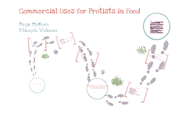 Copy of Commercial Uses for Protists in food
