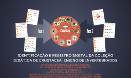IDENTIFICAÇÃO E REGISTRO DIGITAL DA COLEÇÃO DIDÁTICA DE CRUS