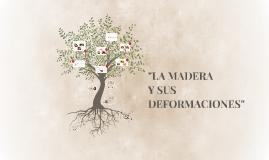 Copy of LA MADERA