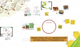 """IMPORTANCIA DE LA CONSERVACION DE ESPECIES DE """"LA MILPA MAYA"""
