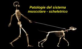 Copy of Patologie del sistema muscolare - scheletrico