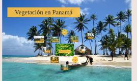 Copy of Vegetación en Panamá