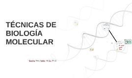 TÉCNICAS MOLECULARES