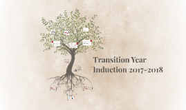 Transition Year 2016-2017 Student Presentation