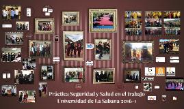 Presentación Practica SST