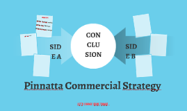 Pinnatta Commercial Strategy