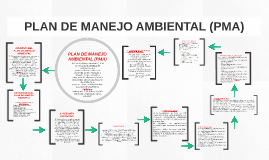 PLAN DE MANEJO AMBIENTAL (PMA)