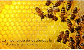 la importancia de las abejas y la miel para el ser humano