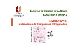 Clase Nº37 Metabolismo Compuestos Nitrogenados