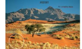 Copy of Desert Themed Terrarium