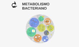 Copy of METABOLISMO BACTERIANO