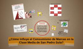 ¿Cómo Influye el Consumismo de Marcas en la Clase Media de S