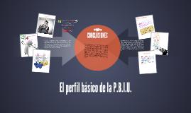 El perfil básico de la P.B.I.U.
